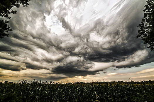Twisted Sky by Matt Molloy