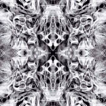 Twisted Souls by Shane B