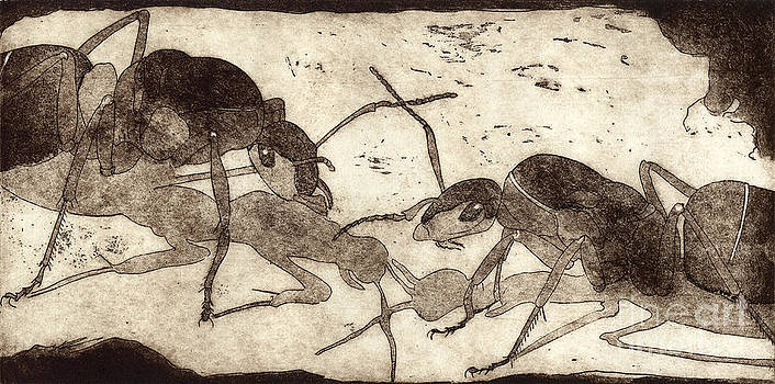 Two ants in communication - etching by Urft Valley Art