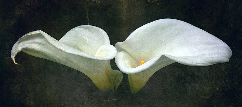 Two by Cathie Tyler