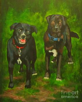 John Malone - Two Different Dogs