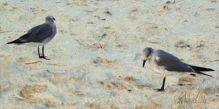 Two Gulls by Forest Stiltner