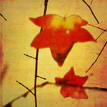 Two Leaves by Sharon Kalstek-Coty