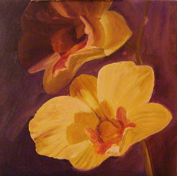 Two Orchids by Laura Skoglund
