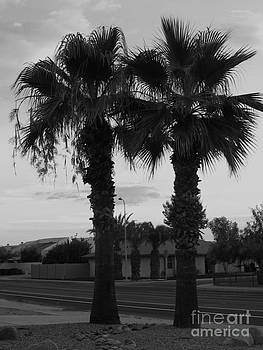 Two Palms by Theresa Davis