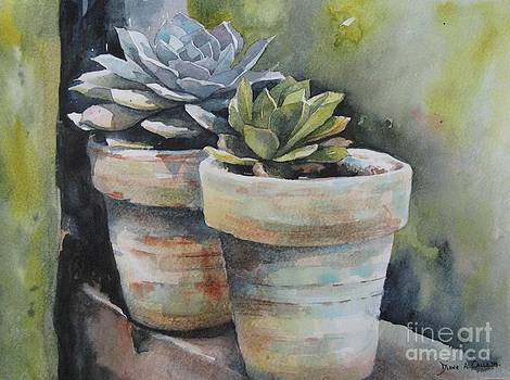 Two pots by Diane Agius