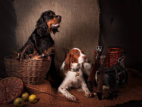 Two setters... by Tanya Kozlovsky