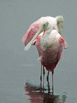 Two Spoonbills by Bob Richter