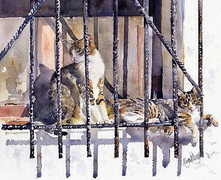 Two Tabby cats by Margaret Merry