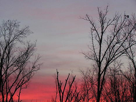 Two-Tone Sky by Pamela Morrow
