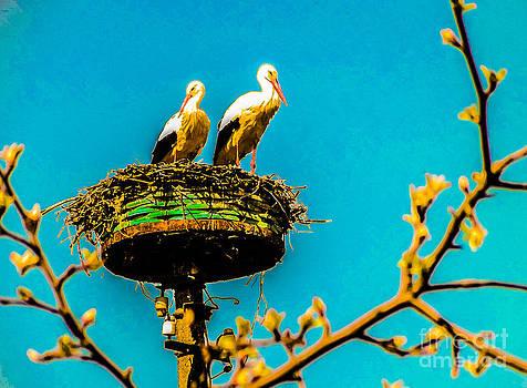 Algirdas Lukas - Two White Storks 08