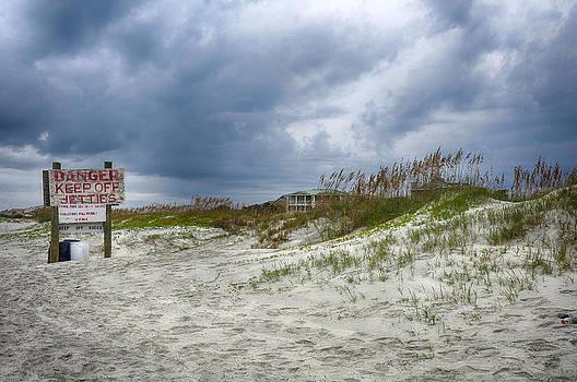 Tybee Island by Donnie Smith