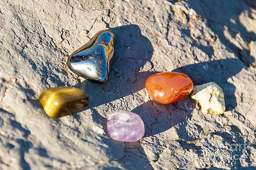 Tyler's Stones by Donald Davis