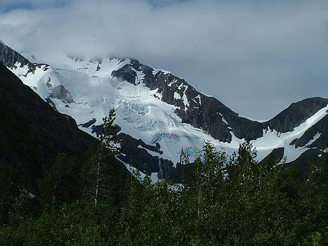 Typical Mountain Day in Alaska by Geoffrey McLean