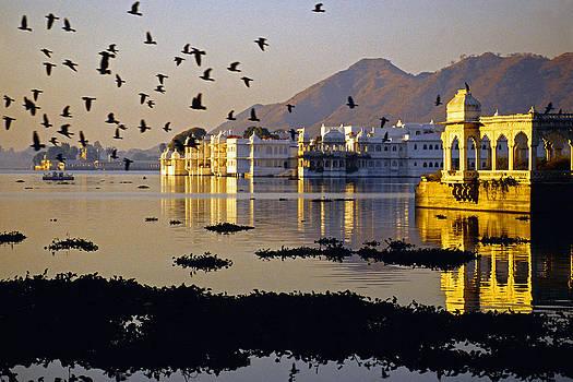 Dennis Cox - Udaipur Lake Palace