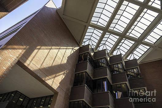 Lynn Palmer - UF Marston Science Library Skylight