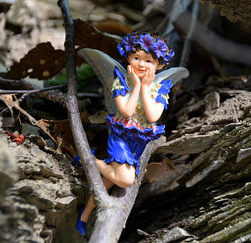Uh Oh You Found Me Woodland Fairies by Linda Rae Cuthbertson