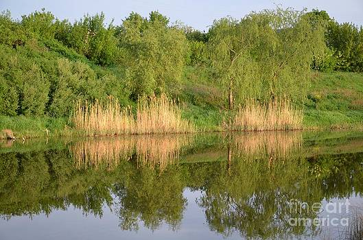 Ukrainian landscape by Leonid Nozdrachov