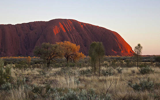 Venetia Featherstone-Witty - Uluru Ayers Rock at Sunset