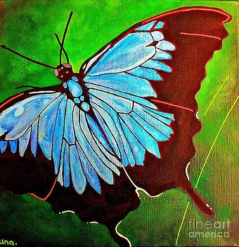 Ulysses Butterfly by Una  Miller