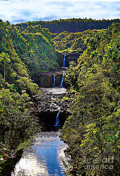 Umauma Falls II by Patricia Griffin Brett