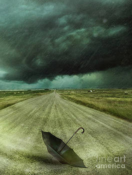 Sandra Cunningham - Umbrella left on the road with wind and rain