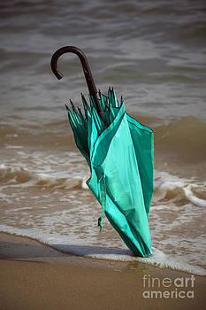 Svetlana Sewell - Umbrella
