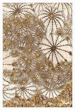 Liz  Alderdice - Umbrellas and Urchins