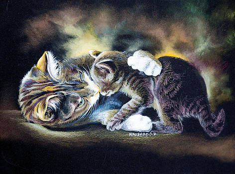 unconditional Love by Naushad  Waheed