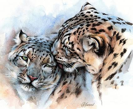 Unconditionally Snow Leopards by Christine Karron