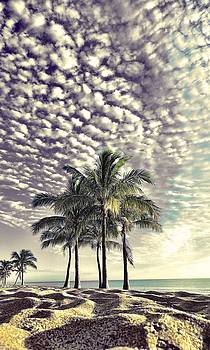Under a mackerel sky. by Andrew Royston