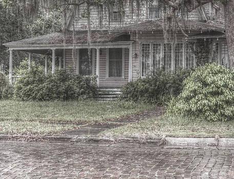 Howard Markel - Under the Oaks.