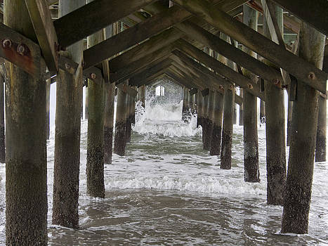 Under the Pawleys Island Pier by Sandra Anderson