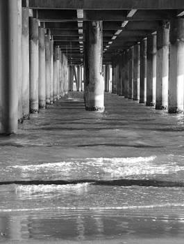 Bonnie Davidson - Under the Pier
