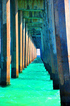 Under The Pier Too by Vonda Barnett