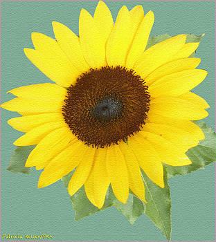 Under The Sunflower's Spell by Patricia Keller