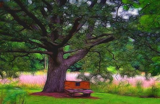 Under the Tree by Julie Grace