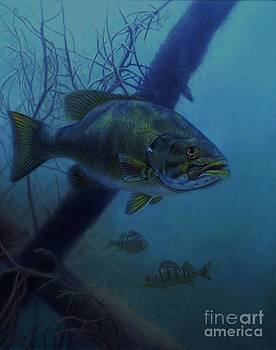 John Calhoun - Undercover Bass