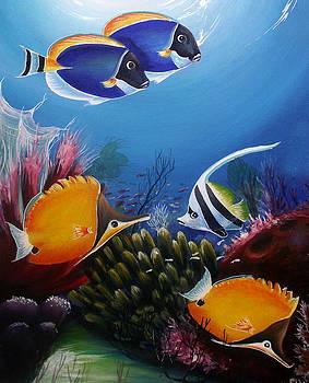 Underwater-7 by Naushad  Waheed