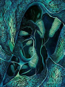 Underwater Revelation by Lyn Pacificar