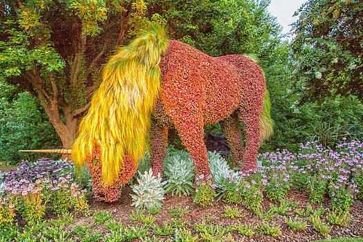Unicorn  by Bob McGill
