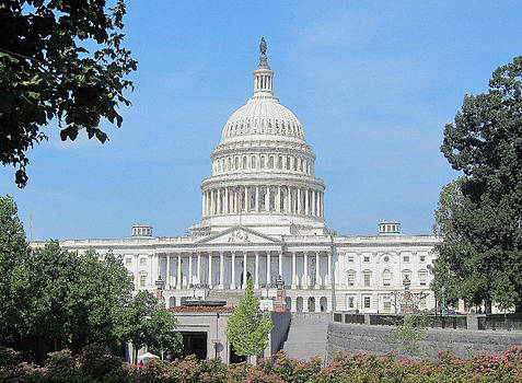 United States Capitol by Laurie Poetschke