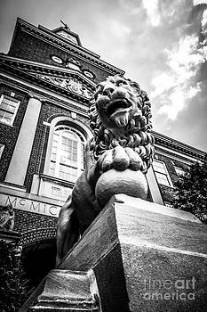 Paul Velgos - University of Cincinnati Lion Black and White Picture