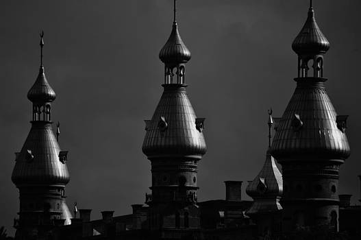 University of Tampa by Tara Miller