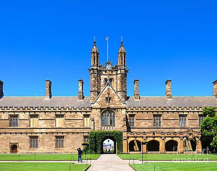 David Hill - University quadrangle with gothic revival architecture