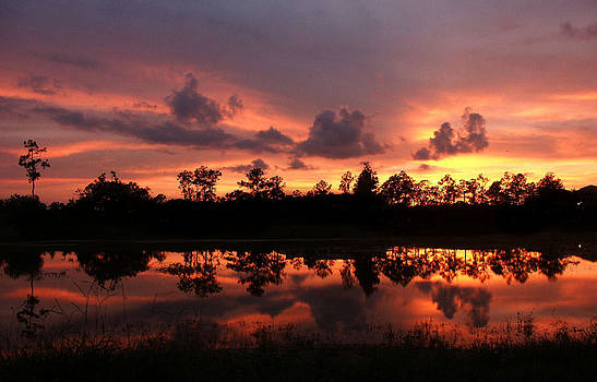 Untitled Sunset #37 by Bill Lucas