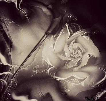 Up In Smoke by Linda Gonzalez