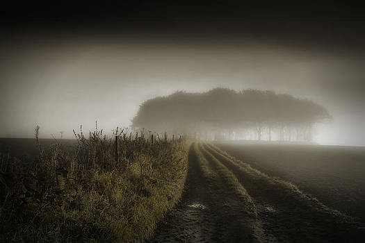 Up on t moor... by Russell Styles