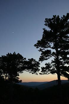 Nina Fosdick - Up on the mountain at dusk