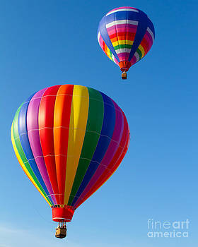 Up Up and Away  by A New Focus Photography